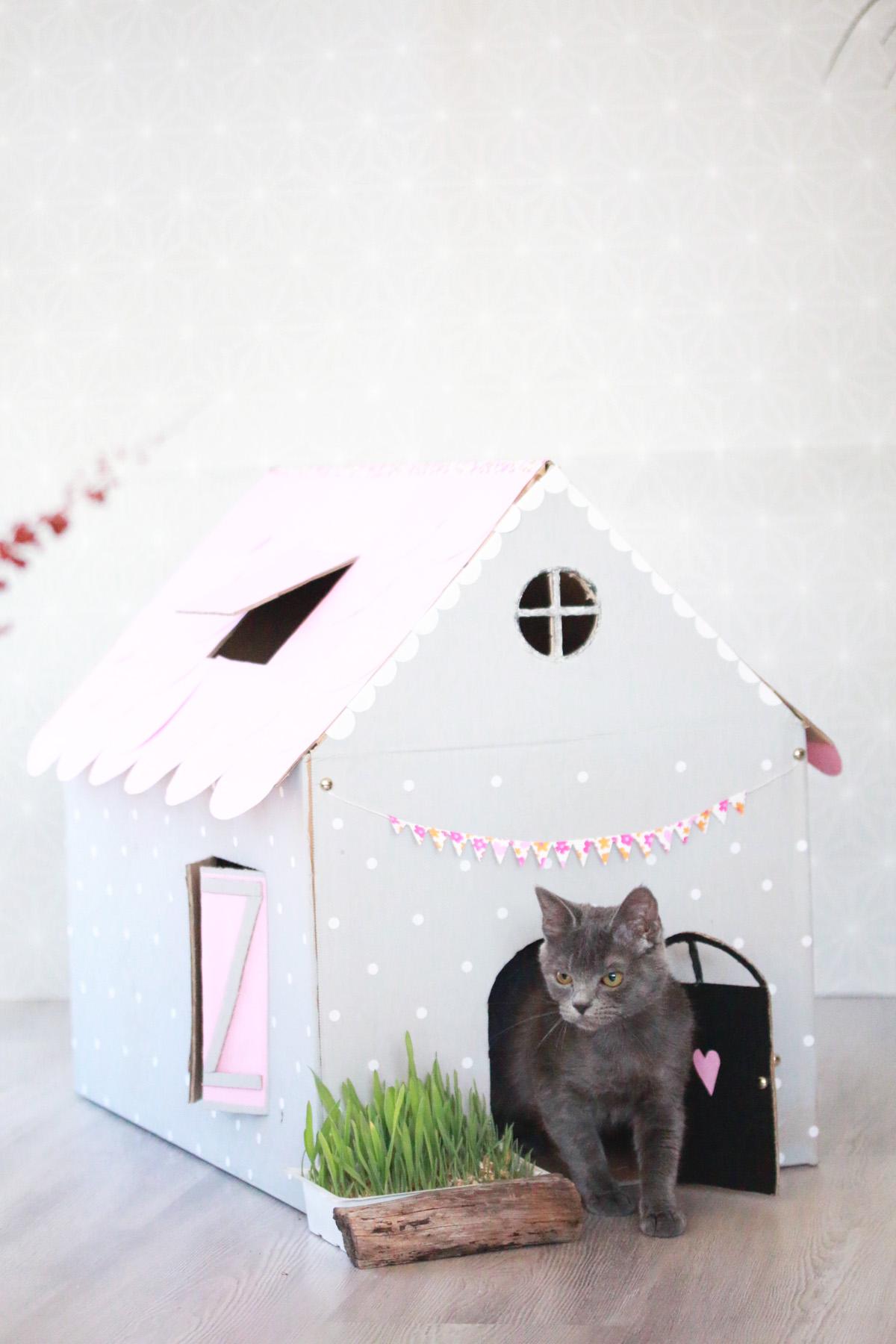 maison de poupée diy pour chat