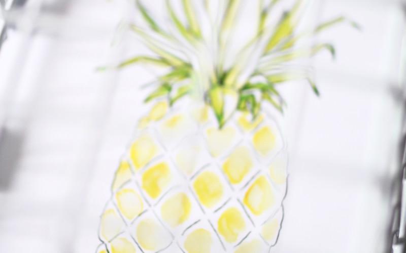 tableau ananas lydia kepinski