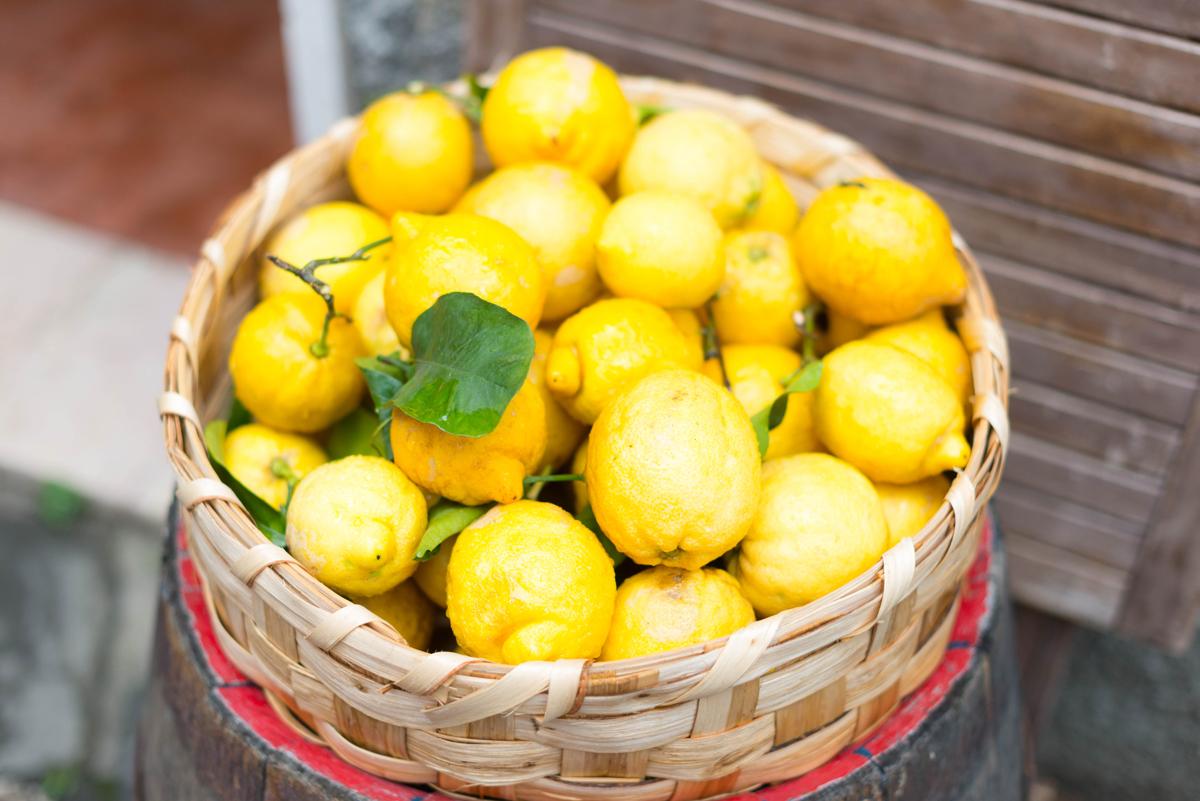Citrons de Cinque terre | SP4NK BLOG