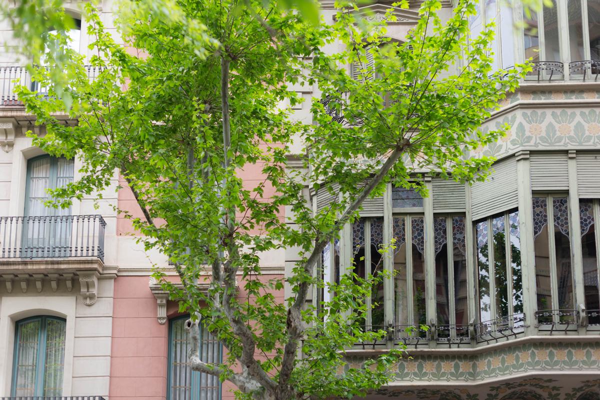 Les facades de Barcelone  | SP4NK BLOG
