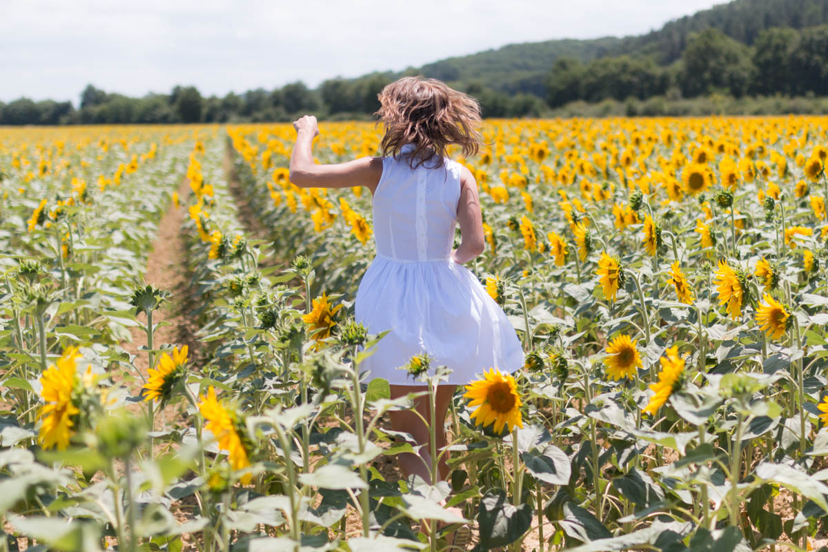 White dress in the sunflowers 4 | SP4NK BLOG