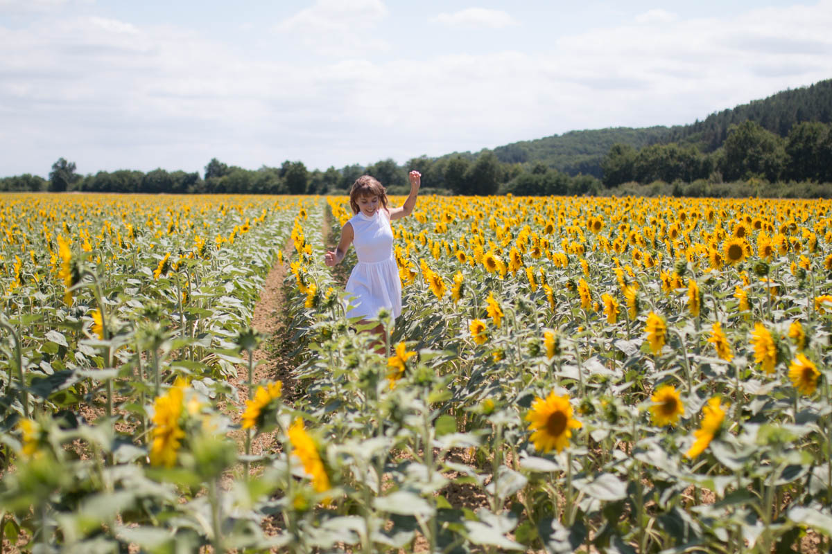 White dress in the sunflowers 5 | SP4NK BLOG