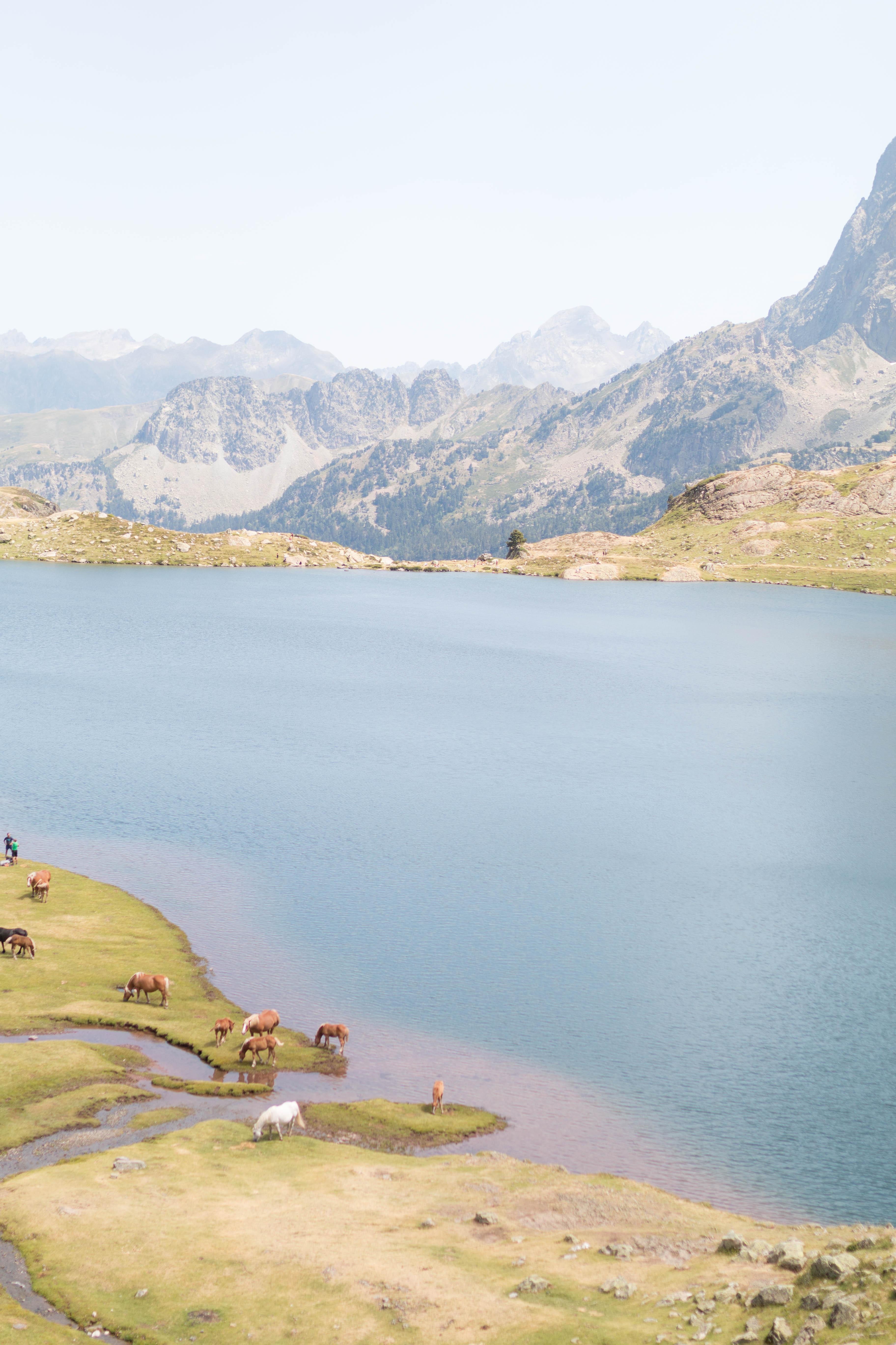 Pyrénées randonnées le tour des lacs d'ayous 2 | SP4NK BLOG
