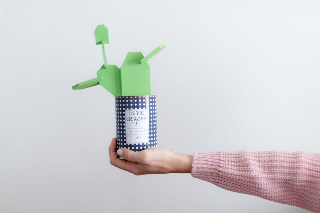 DIY #63 Le cactus en papier