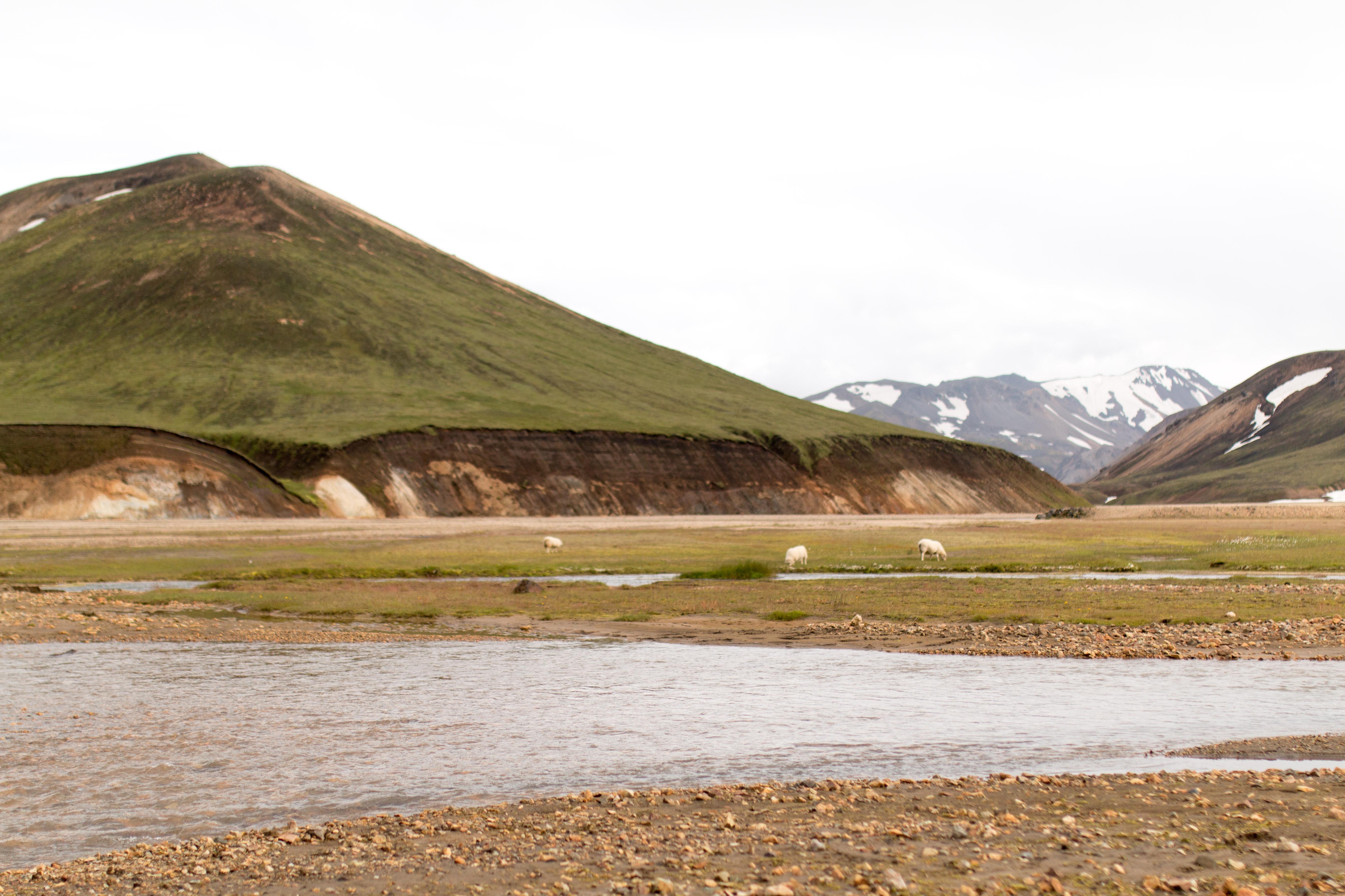 voyage en islande pendant 8 jours avec ma maman I Sp4nkblog_-18