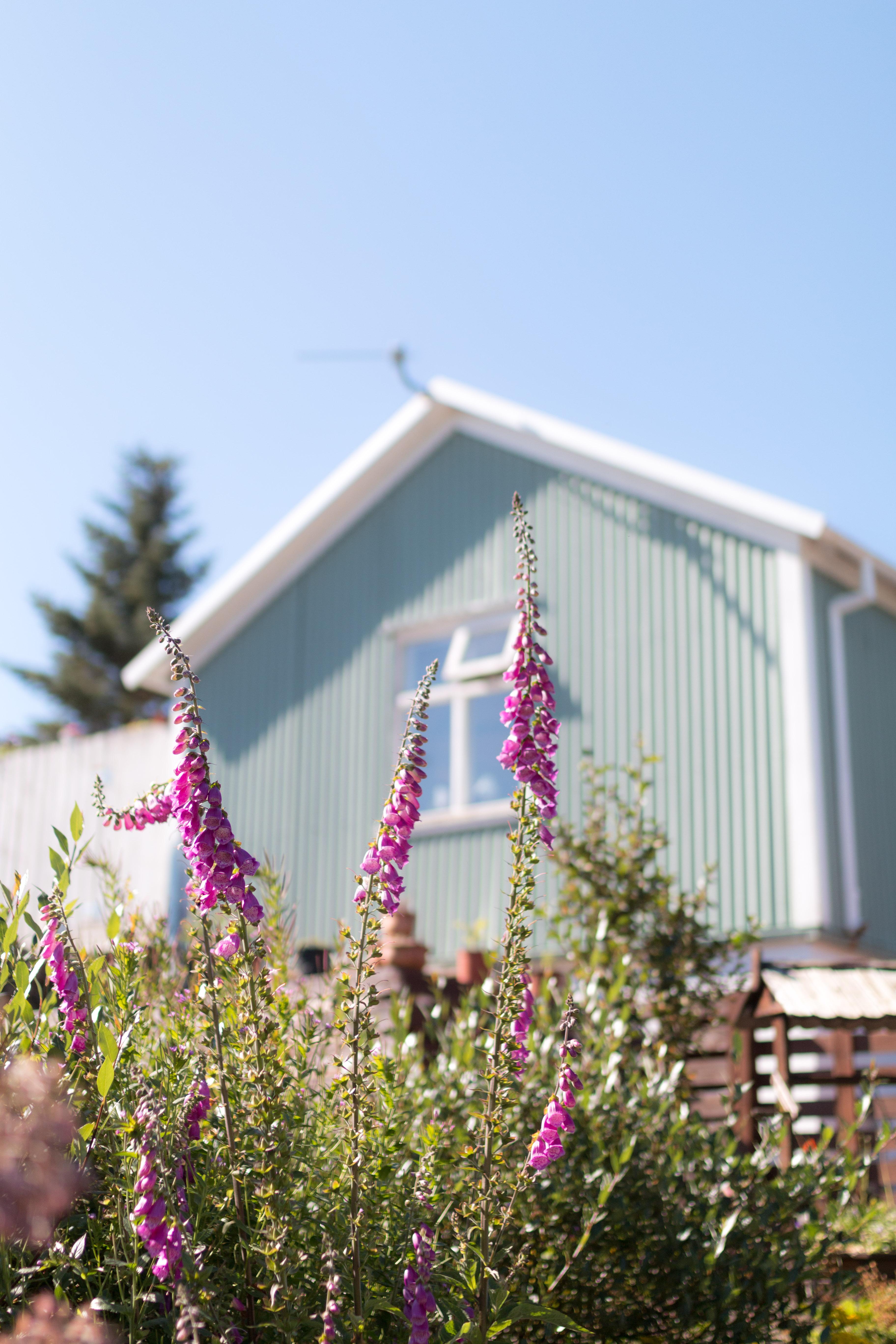 voyage en islande pendant 8 jours avec ma maman I Sp4nkblog_-47