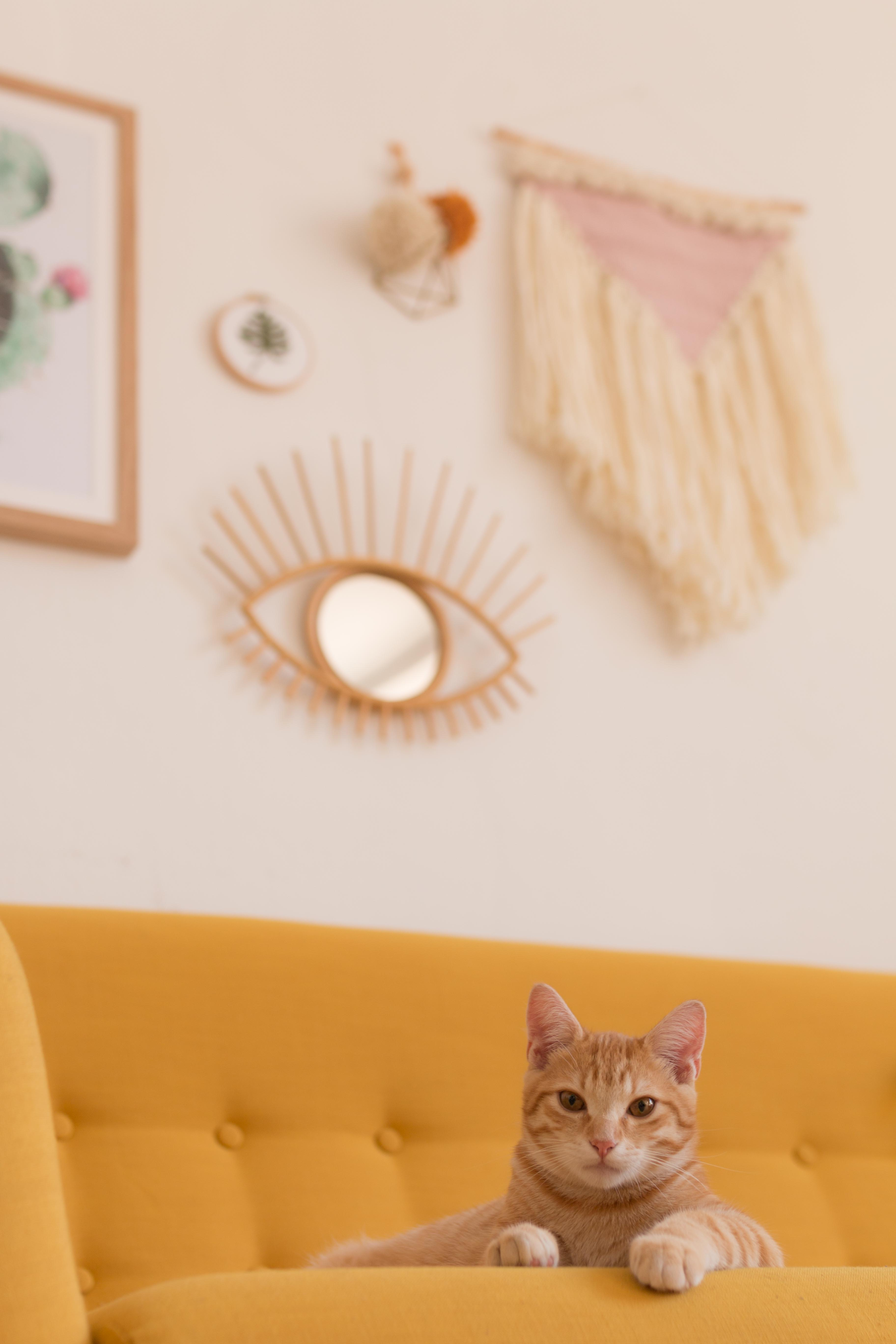 deco-de-mon-salon-home-cute-sweet-home-i-sp4nkblog-8
