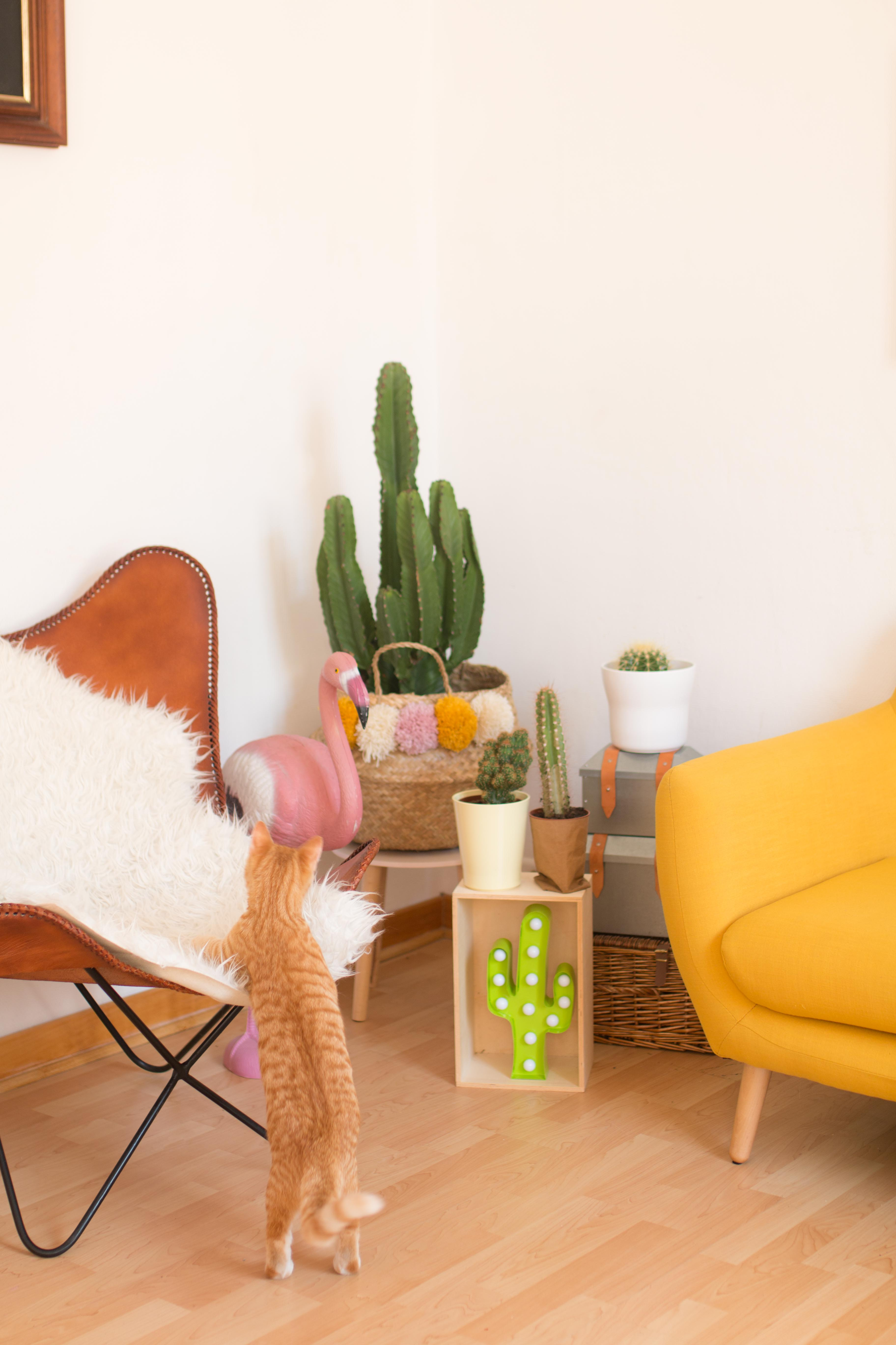 deco-de-mon-salon-home-cute-sweet-home-i-sp4nkblog