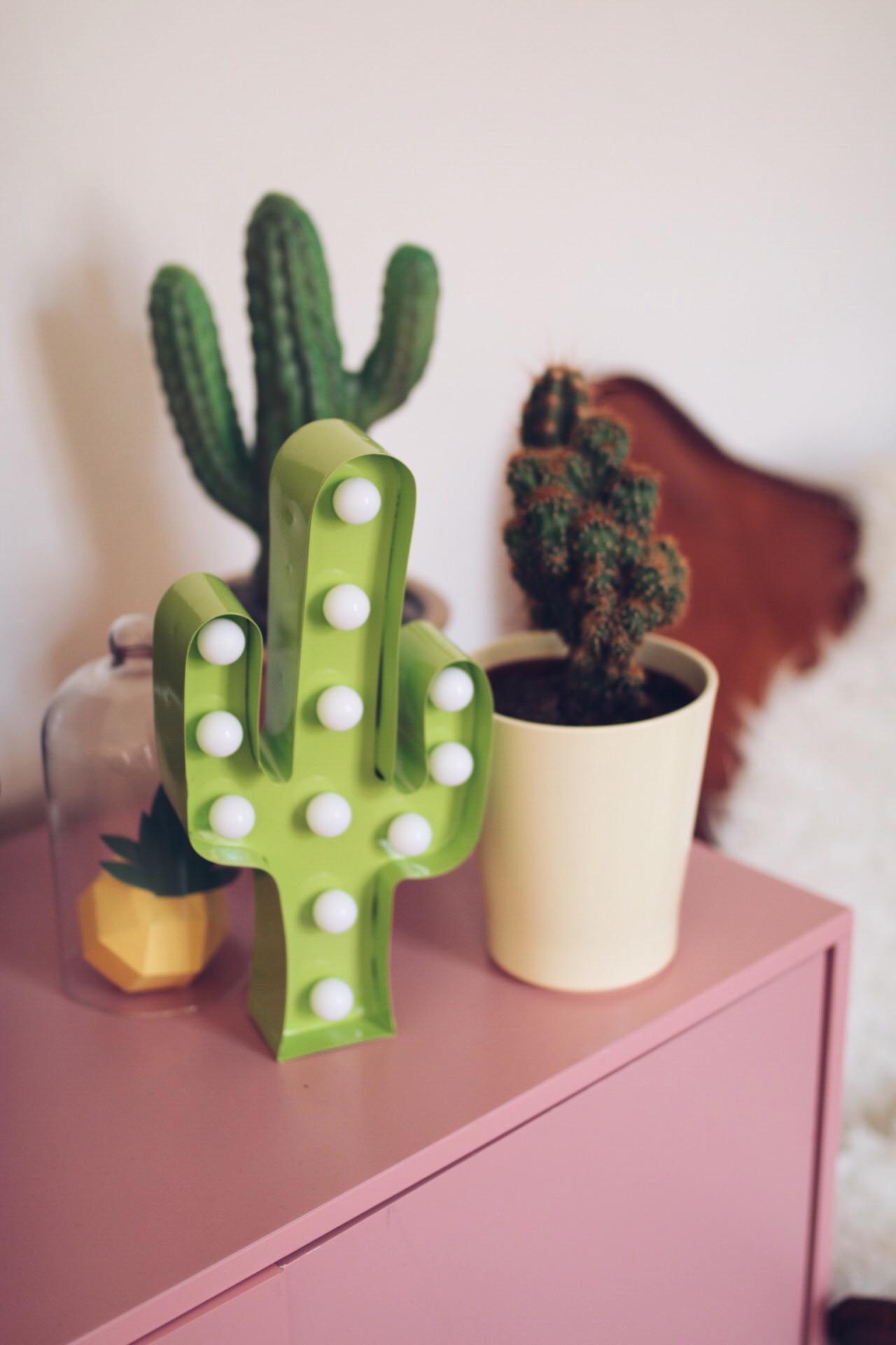 Lampe cactus I Sp4nkblog