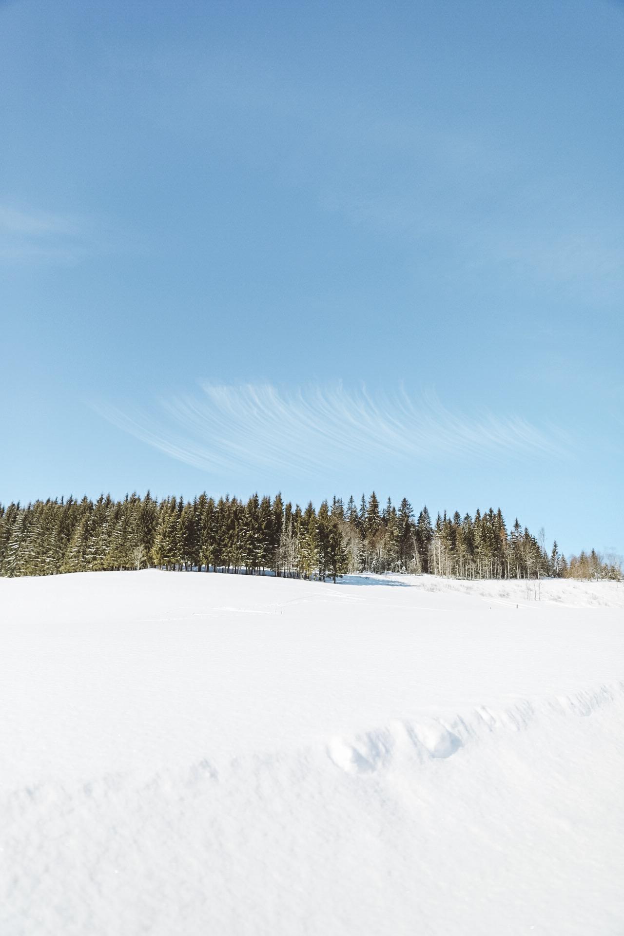 paysage recouvert de neige dans les alpes