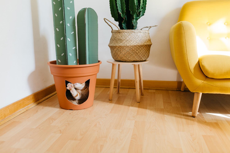 diy-chat-cat-cactus-maison-house-15