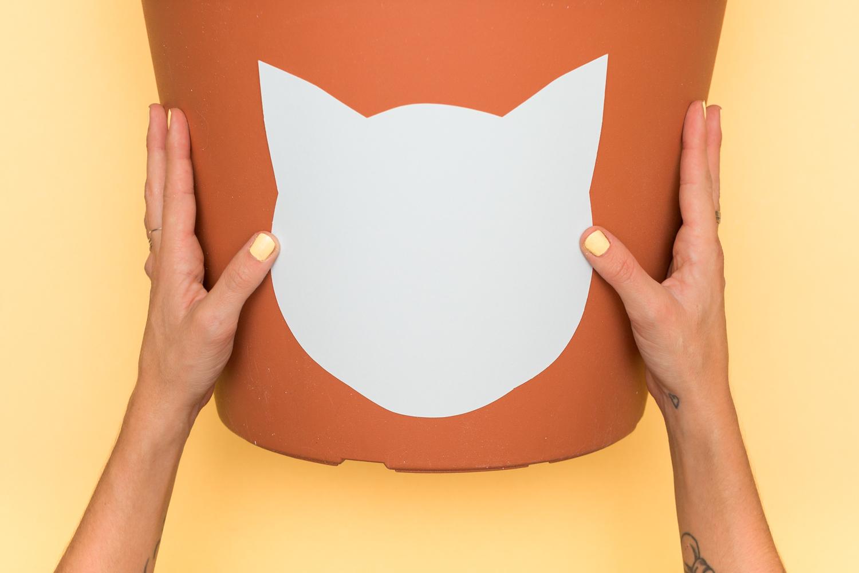 diy-chat-cat-cactus-maison-house-5