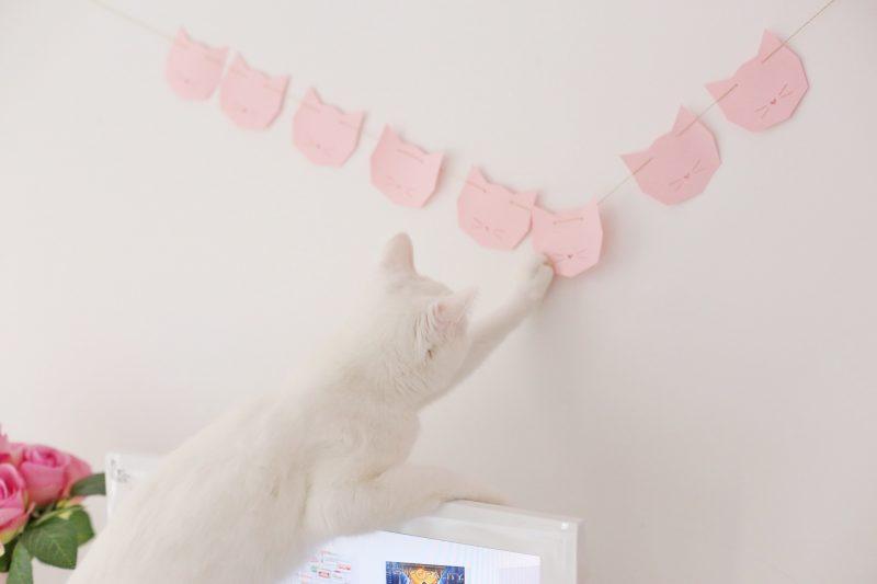 diy guirland chat cat garland